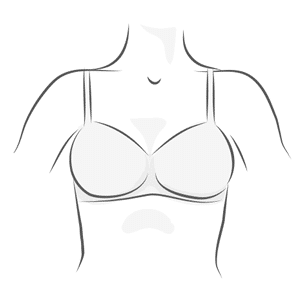 Full Cup Bra Illustration