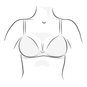 Plunge Bra Illustration