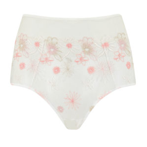 Eden Ivory Embroidered High Waisted Knickers